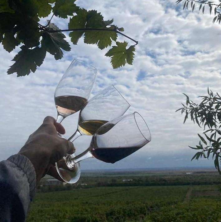 vinurile-de-pietroasele,-promovate-dupa-reteta-spaniolilor.-parteneriat-cu-regiunea-rioja-pentru-dezvoltarea-podgoriilor-buzoiene